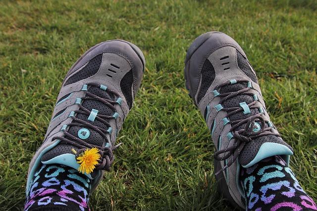 pampeliška na botě